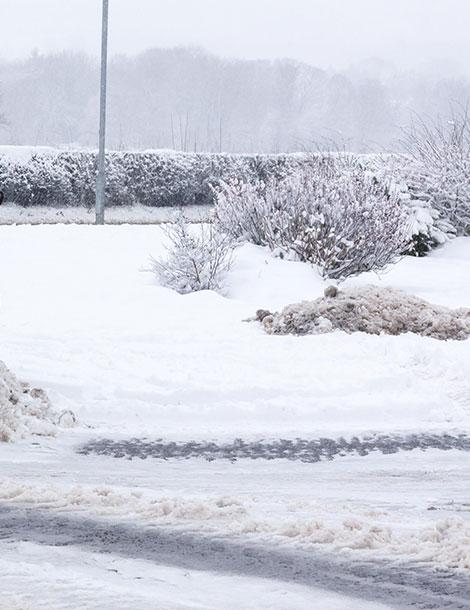 Snow-scene